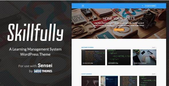 Универсальный шаблон Skillfully для WordPress