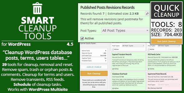 Smart Cleanup Tools 4.5 — умный плагин для WordPress